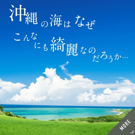 沖縄の海はなぜこんなにも綺麗なのだろうか…